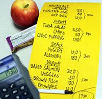 räkna kalorier program